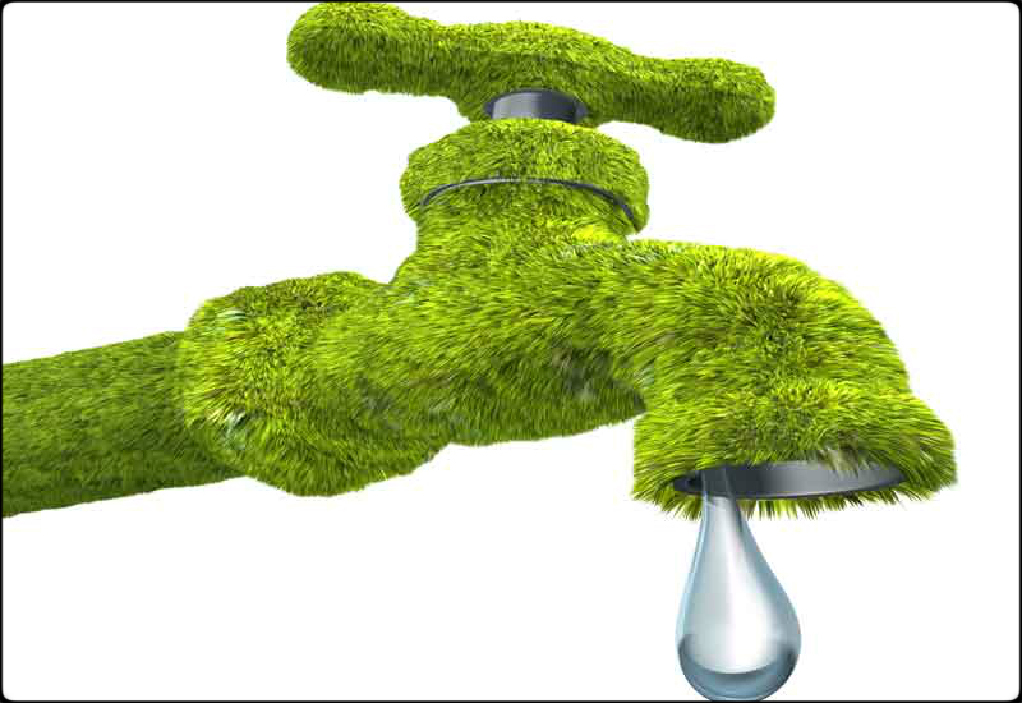 Reduce water usage with green plumbing ways2gogreen blog for Eco friendly faucets