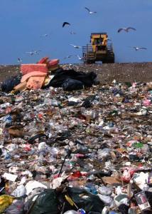 landfill decomposition rates for common items