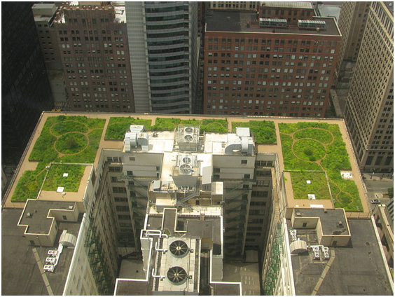 rise of urban greening