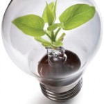 Go Green with LED lighting solutions