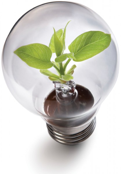 Go Green With LED Lighting Solutions Ways2GoGreen Blog