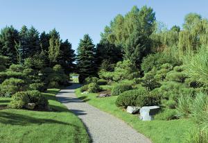 japanese gardens - first impression