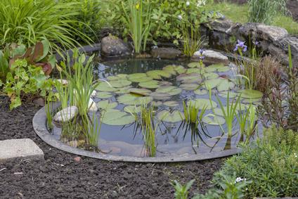 revamp your garden
