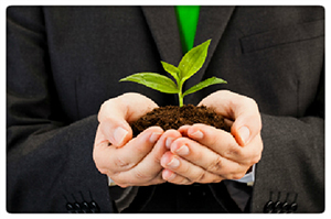 hold plant- greening your warehouse