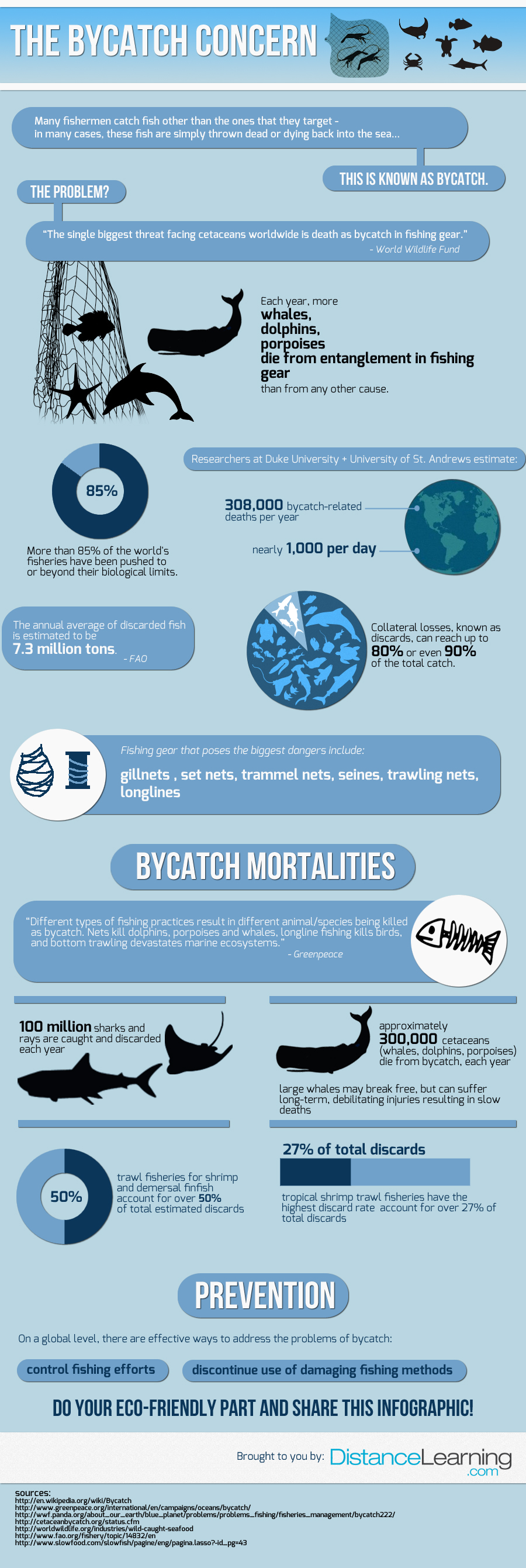 bycatch infographic - the bycatch concern