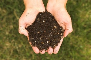 compost - reduce carbon footprint