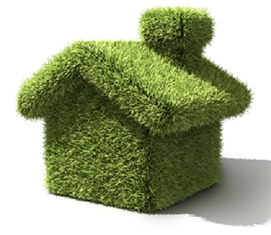 ways to go green at home