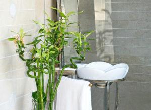 bamboo-small bathroom