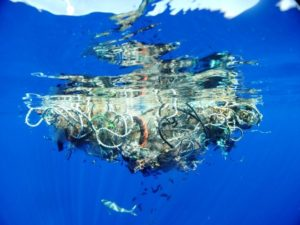 saving our ocean