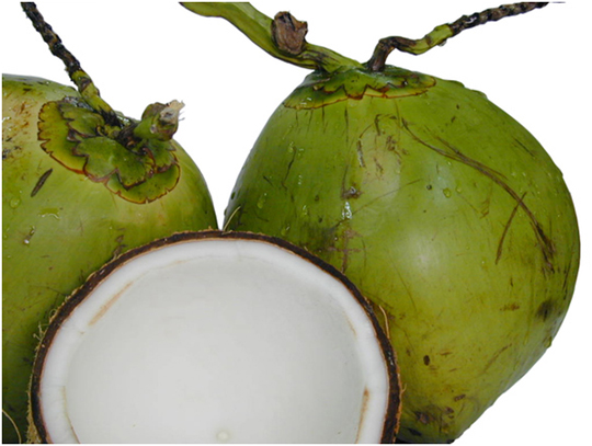 coconuts - not sports drinks