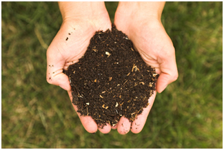 reduce waste - try composting