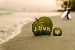 eco-friendly beach wedding