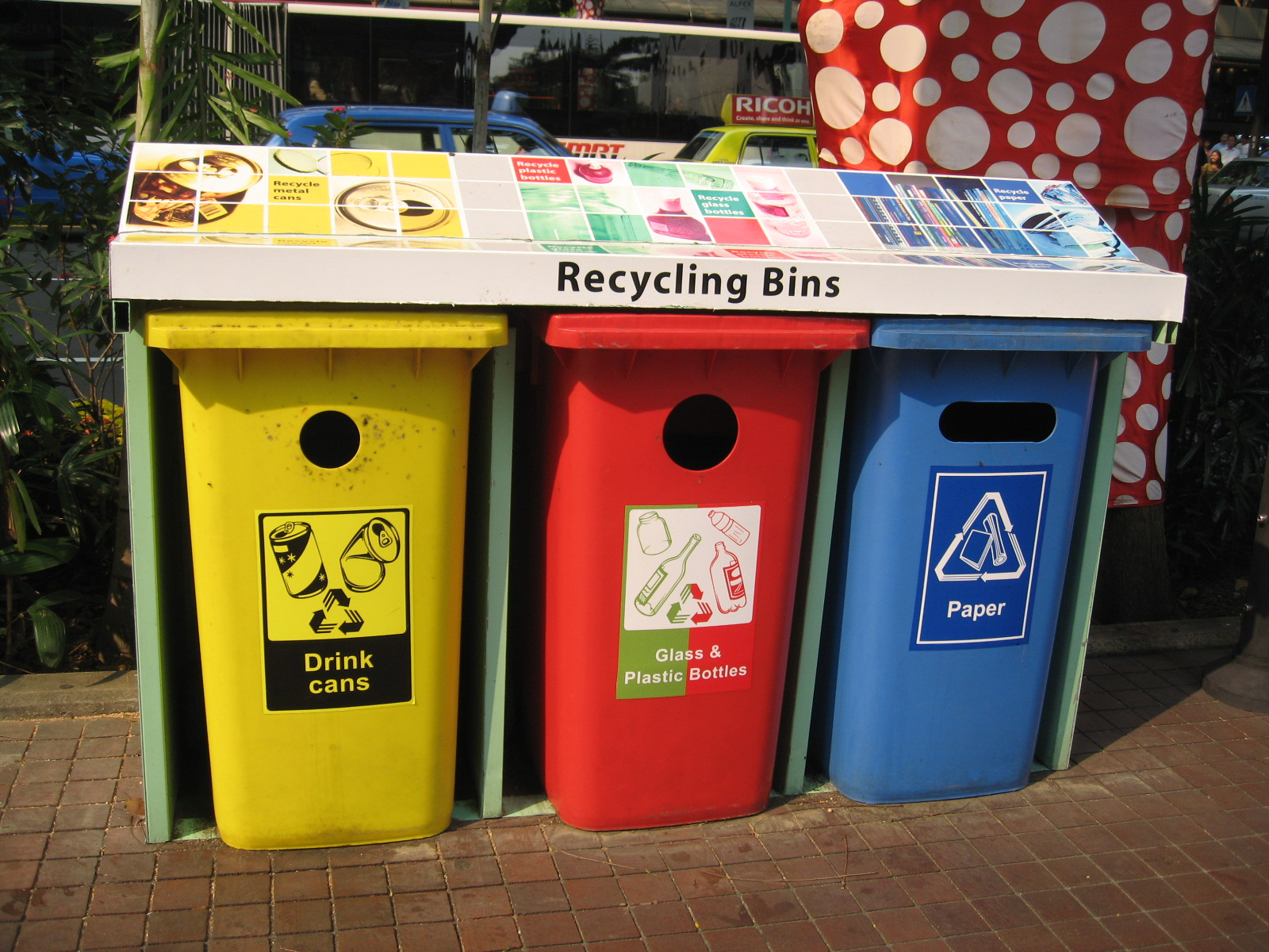 6 Easy Ways to Be an Eco-Friendly Student