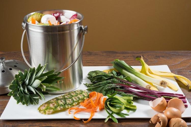 Epica 1.3 Gallon Compost Bin