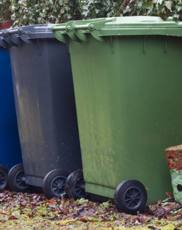 proper sorting and waste disposal