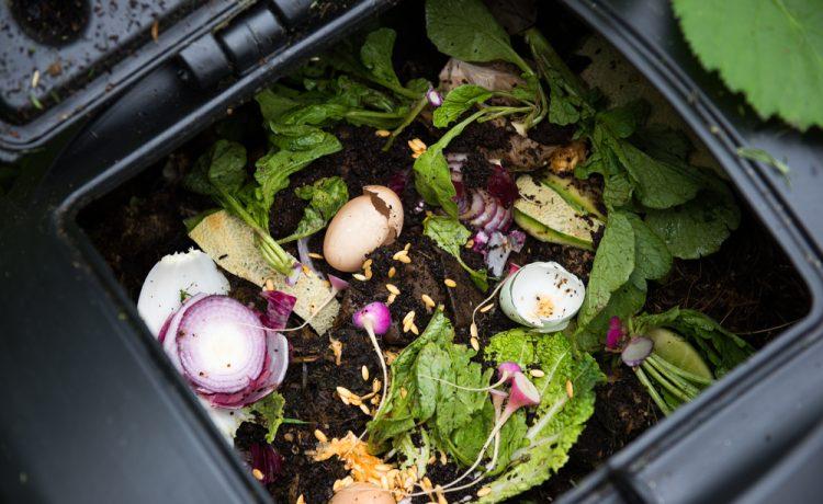 make your rubbish removal more eco friendly