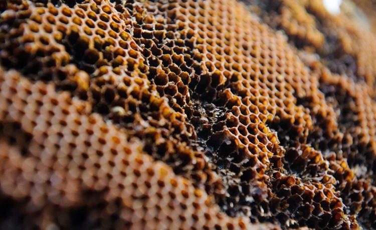 ethical honey