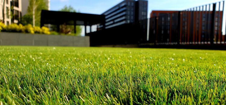 what maintenance does a lawn mower need